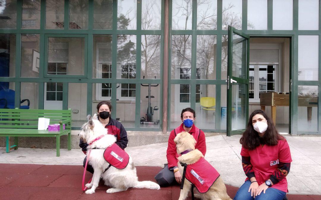 La Oficina de Intervención Asistida con Animales de la URJC participa en el estudio Mental-Dog para conocer los beneficios de trabajar con perros en la Unidad de Agudo de Psiquiatría