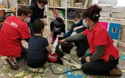 La Oficina de Intervención Asistida con Animales de la URJC colabora con el CEIP Alonso Cano a través de sesiones enfocadas a alumnos diagnosticados con TEA (Trastorno del espectro autista)
