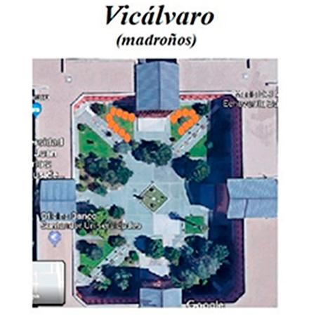 Imagen campus Vicálvaro ODS URJC Plantación de 17 árboles en los campus de Alcorcón, Aranjuez y Vicálvaro