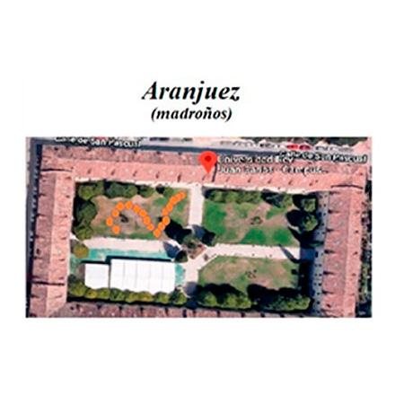 Imagen Campus Aranjuez ODS URJC Plantación de 17 árboles en los campus de Alcorcón, Aranjuez y Vicálvaro